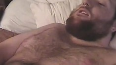 Bearded white boy gets a taste of a chubby chocolate bear's dick